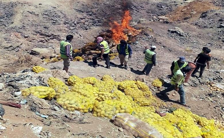 Kilis'te 25 Ton patates imha edildi